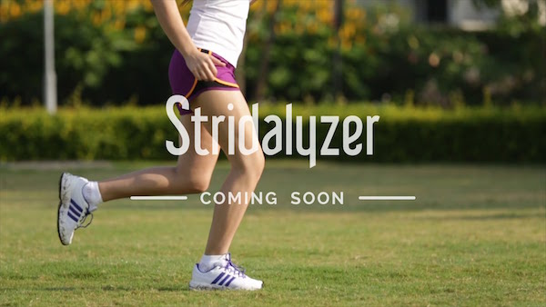 Stridalyzer